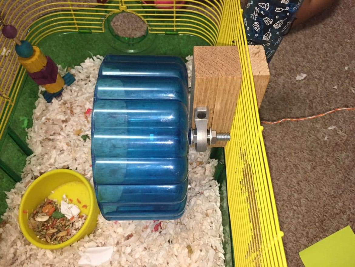 hamster-wheel-pedometer-mounted-side-view